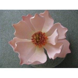 Set 3 cortadores magnolia - Abono para magnolios ...